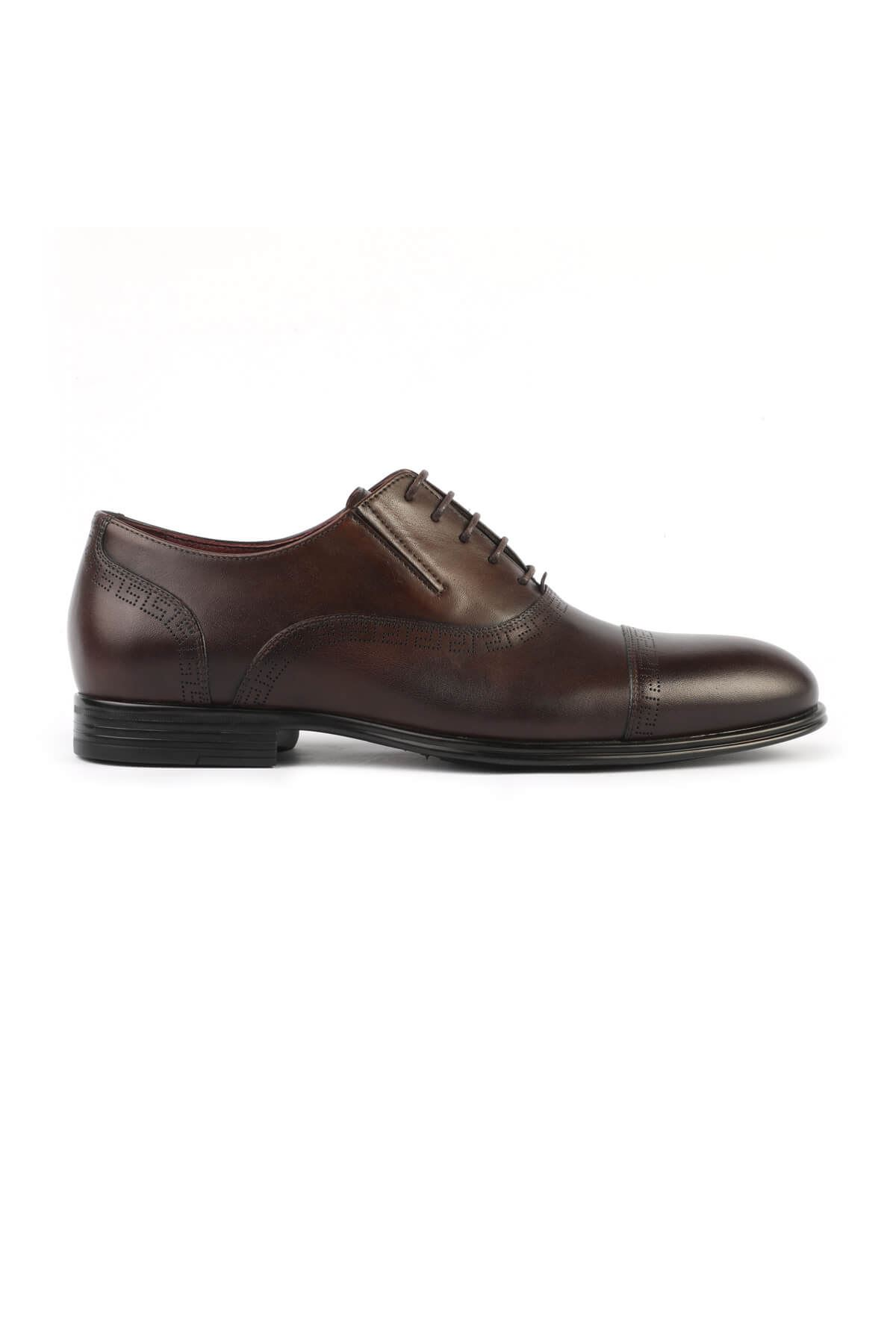 Libero 3113 Brown Classic Shoes